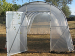 Polytunnels 3.65m wide  with windows